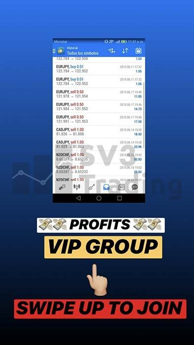 customer results vip group of forex telegram