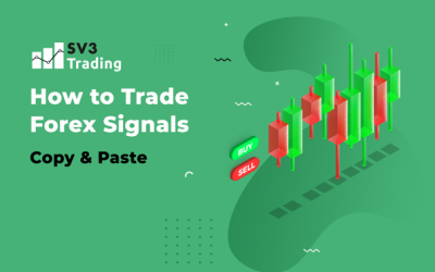How to Trade Forex Signals?